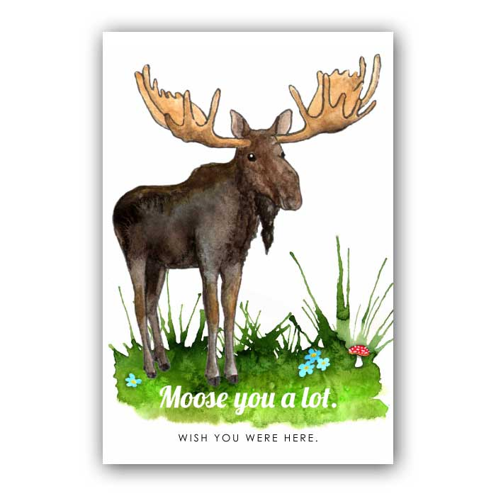 Moose you a lot Wish you were here. Postcard