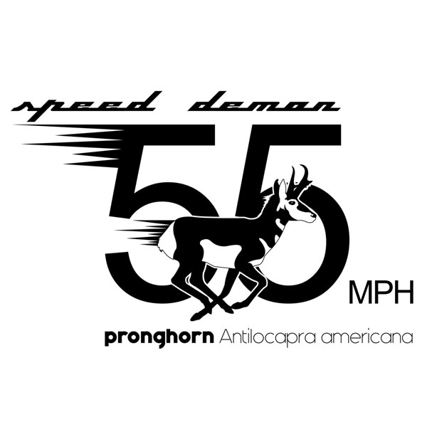 speed_demon