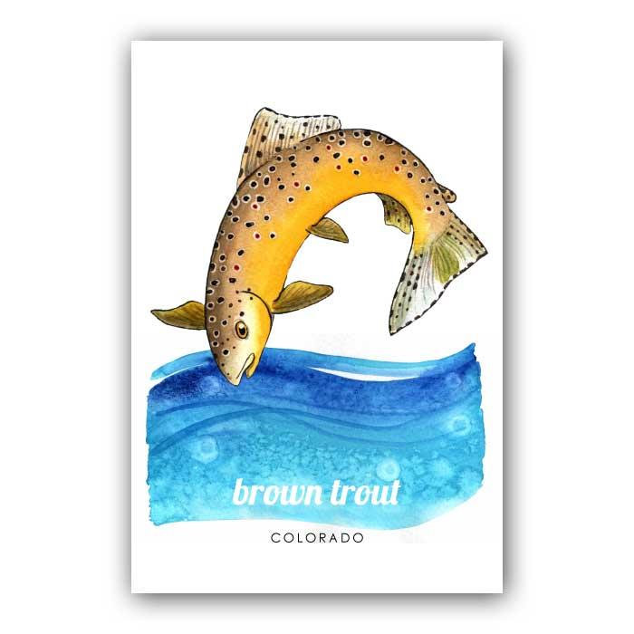 Brown Trout - Postcard