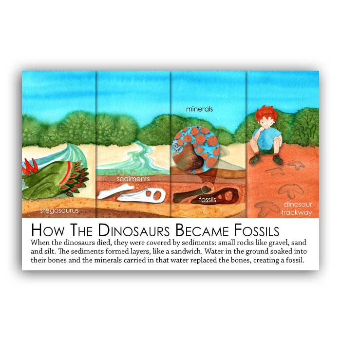 How the dinosaurs became fossils
