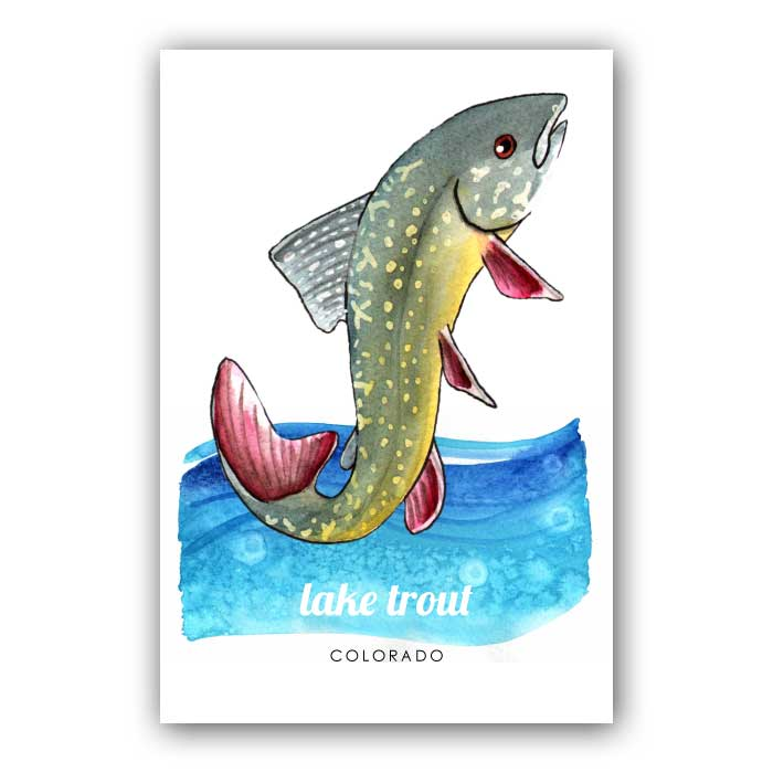 Lake Trout Postcard